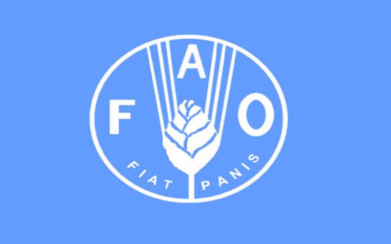 La FAO acoge propuesta de sostenibilidad ambiental del Gobierno dominicano