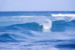 Yo soy el océano…