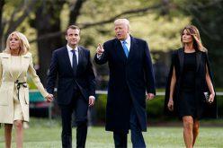 Entonces desapareció el árbol que Emmanuel Macron regaló a Donald Trump y que ambos plantaron en la Casa Blanca… ¿Y cómo fue eso…?