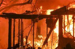 Incendio forestal de California es el más mortífero de la historia en la zona; aumenta a 42 el número de muertos