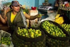 La mujer sigue con limitaciones con respecto al hombre para conseguir empleo o desarrollar negocio propio, según el Banco Mundial