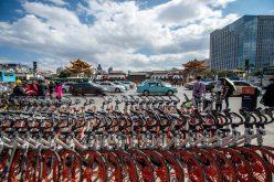 En Beijing, la capital de China, una carretera solo para bicicletas; buscan aliviar el tráfico de vehículos y reducir tiempo
