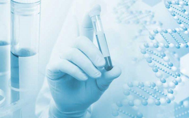 Fármaco para cáncer de mama también es efectivo para cáncer de páncreas, descubre investigadores israelíes
