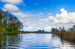 El agua contaminada diminuye en un tercio el crecimiento económico en zonas de alta contaminación, establece publicación del Banco Mundial