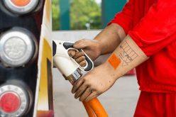 Los precios de productos básicos bajarán en el 2020, pronostica el Grupo Banco Mundial