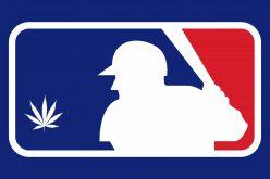 ¿Por qué la MLB permite a sus peloteros de ligas menores fumar marihuana y a los de las mayores no…?