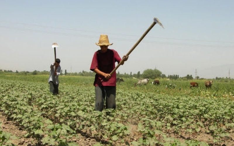 Es hora de redefinir qué significa ser agricultor en el siglo XXI