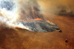 Los incendios de Australia influidos por el cambio climático, según vocera Organización Meteorológica Mundial