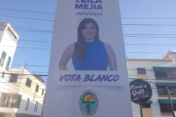 Leila Mejía… Circulan los afiches que promueven a la candidata a diputada… En campaña full…