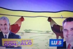 (Video) Movimiento Camisa Mangas Cortas con spot de tv caricaturizando pelea en gallera… ¡El gallo Gonzalo acaba de un solo espuelazo con gallo Abinader!