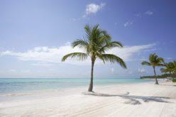 (Video) En Punta Cana hay gran optimismo para reactivar el turismo luego del impacto del Covid-19