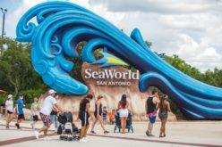 El turismo internacional comienza a reactivarse paulatinamente, según la OMT