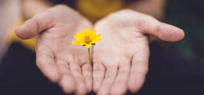 Brindemos bondad e indulgencia a quien nos lastima
