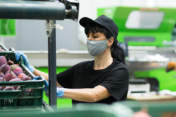 Banco Mundial pronostica economía se expandirá 4 % en 2021